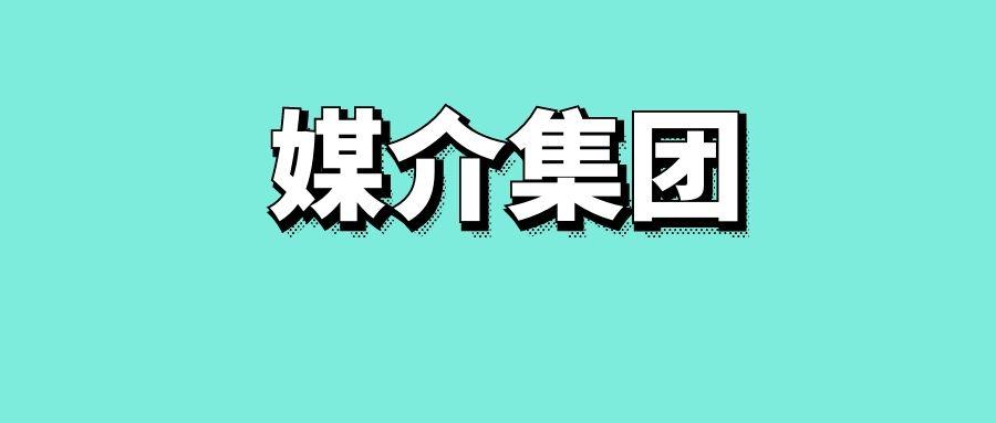 媒介集团名词解释-传播智库